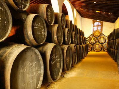 хранение винограда, делаем вино из винограда