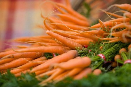 хранение моркови фото