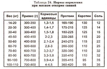 Таблица откорма свиней