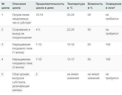 Температурный режим для выращивание вешенок