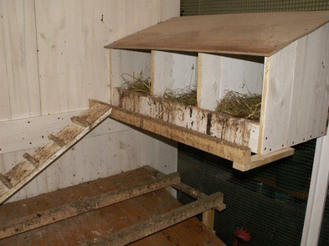 гнезда, клетки для кур
