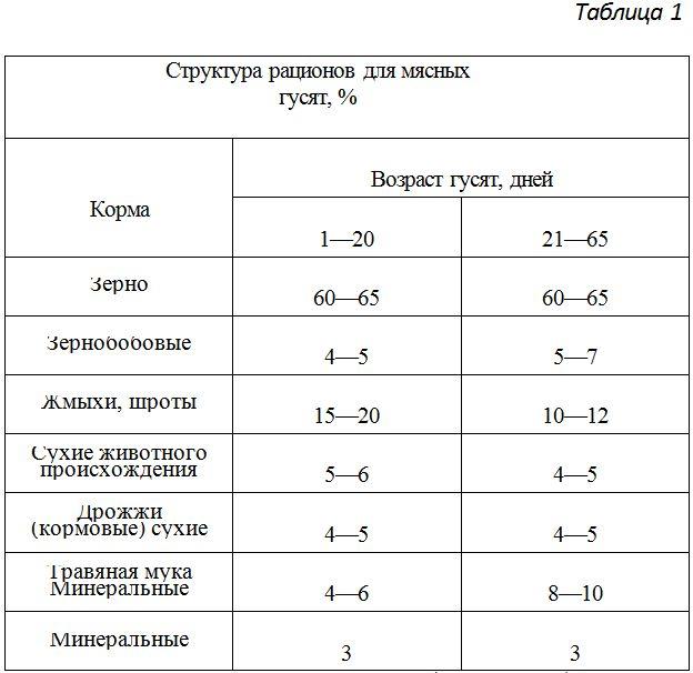 struktura-raciona-dly-mysnih-gusyat