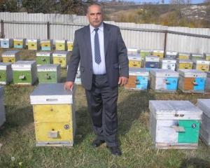Пчеловодство для чайников