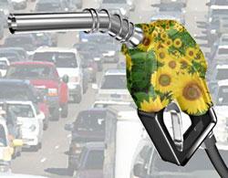 Как получить биодизель своими руками в домашних условиях?
