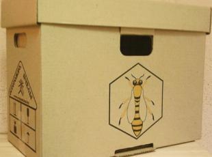 Покупка пчел