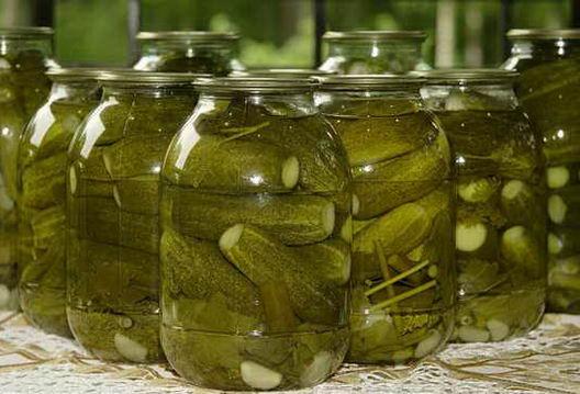 Рецепты засолки огурцов, как засолить огурцы?