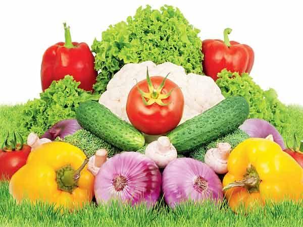 семена овощей голандских