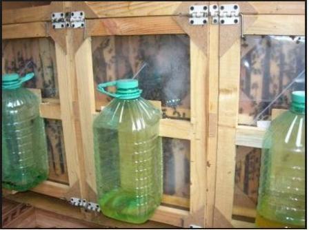 кормушка из бутылки для пчел