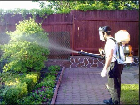 медный купорос применение в садоводстве