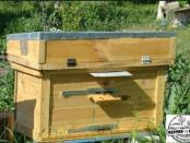 улики для пчел своими руками
