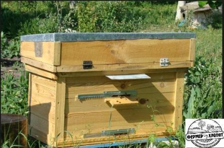 Изготовление пчелиных ульев своими руками видео