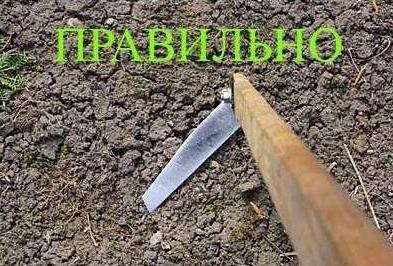 Как правильно работать плоскорезом фокина