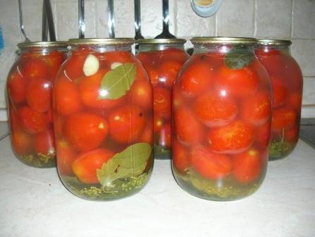 квашенные помидоры в банках рецепт