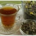 Иван чай или копорский чай. Полезные свойства и противопоказания