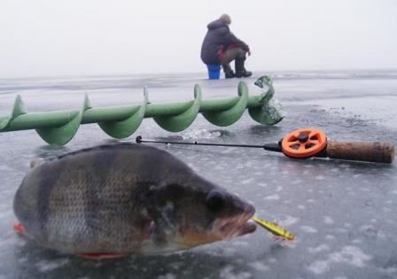 Ловля судака зимой 2016