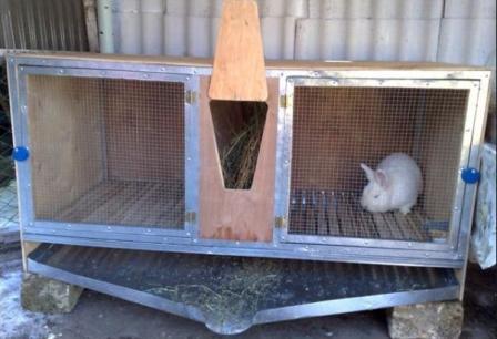 клетки для кроликов в домашних условиях