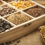 Хранения семян, как сохранить семена правильно