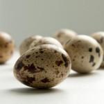 Полезны или вредны перепелиные яйца, для мужчин и женщин.