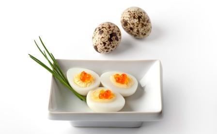 Вред и польза яиц перепелки