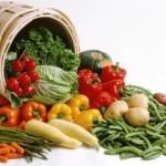Экологические овощи, правила выращивания