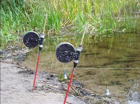 приспособление для ловли рыбы и раков
