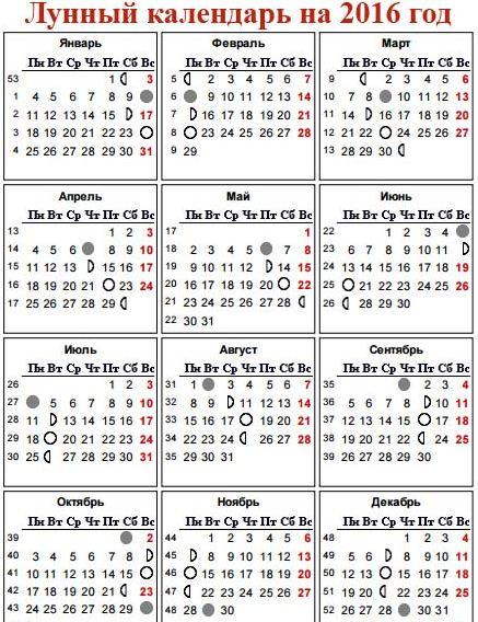 Календарь прививок по свердловской области