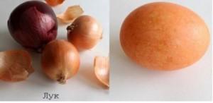 красим яйца луковой краской