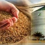 Как хранят зерно, в промышленных масштабах и дома