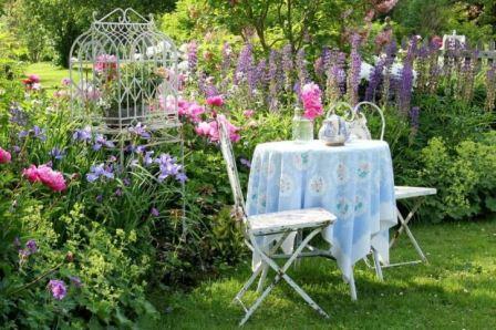 Каталог многолетних цветов для дачи фото с названиями