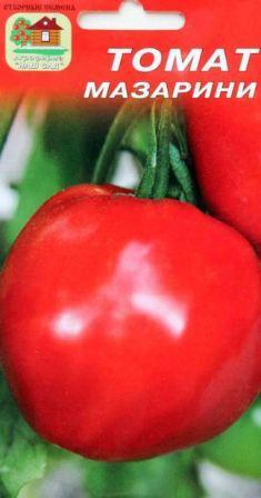 томат мазарини отзывы фото