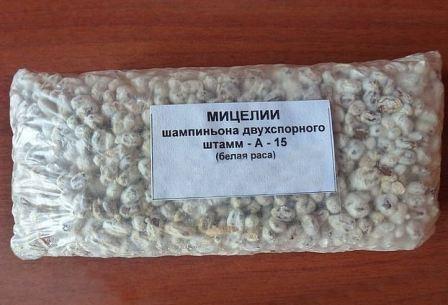 Мицелий на зерновых, фото