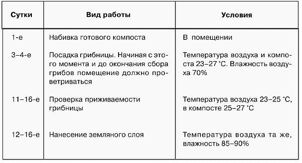 shampinonu_v_domashnix_usloviax_21