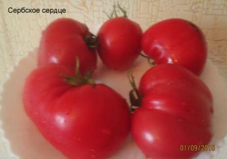 Томат сербское сердце
