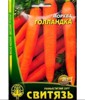 golandka_morkov