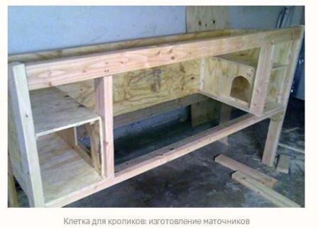 kletki_dlya_krolikov_4