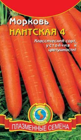 nantskaya_4