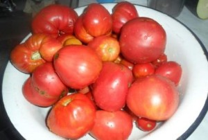 tomaty_v_tarelke