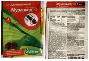 tlya_kak_s_nei_borotsa_2