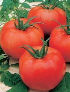 флейта томат